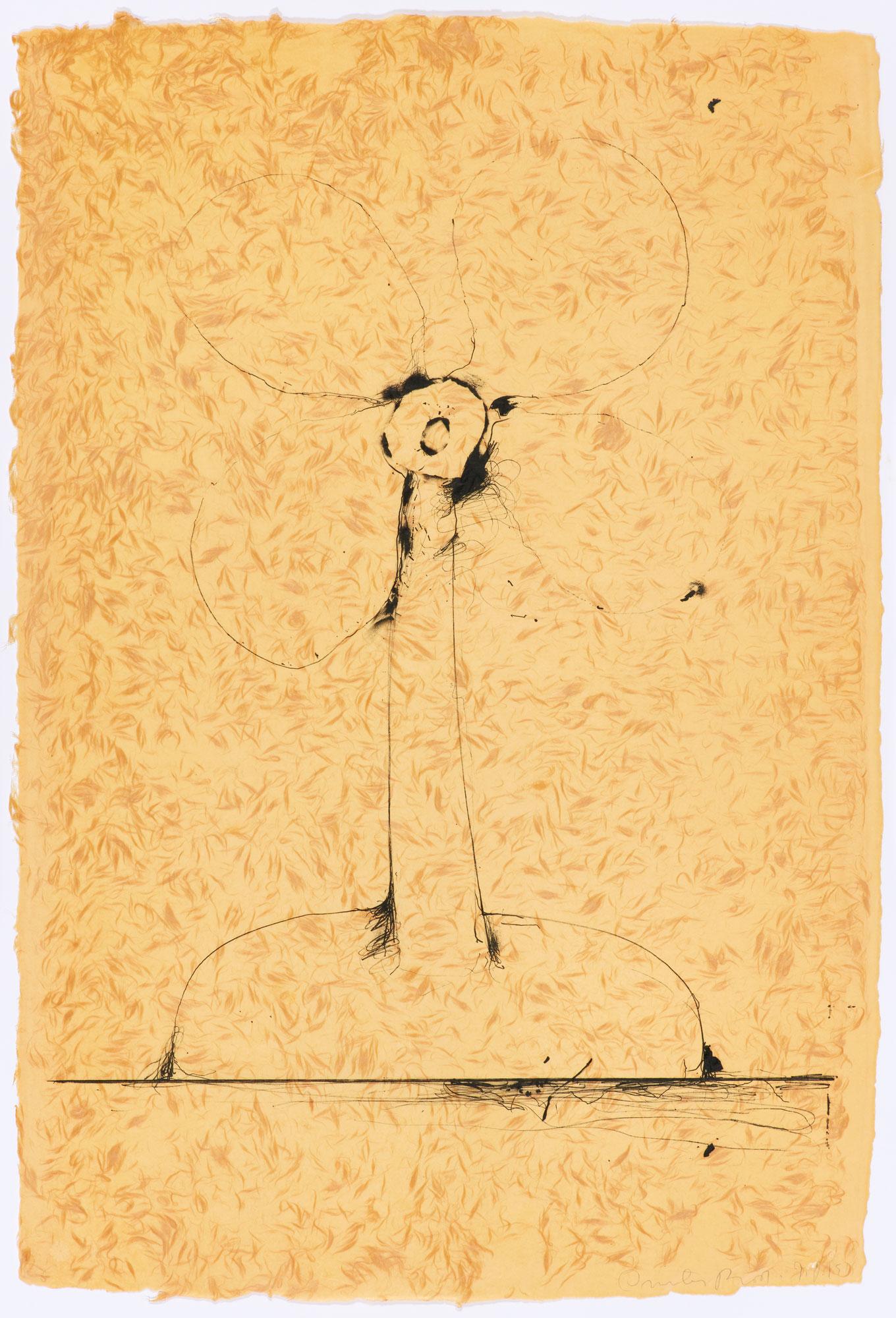 Jim Dine Artists Usf Graphicstudio Institute For